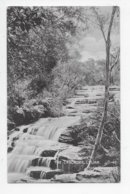 The Cascades, Leura - Other