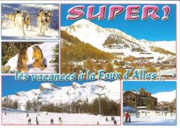 CPM - ALPES DE HAUTE PROVENCE - SUPER ! LES VACANCES A LA FOUX D'ALLOS - CHIENS DE TRAINEAUX - MARMOTTES - PATINOIRE - Francia