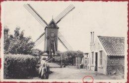 Bredene Aan Zee De Oude Molen Windmolen Windmill Le Vieux Moulin A Vent (scheurtje) - Bredene