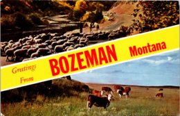 Montana Greetings From Bozeman - Bozeman