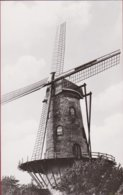 Ruiselede Hosten' S Molen Hostensmolen Windmolen Windmill Moulin A Vent ZELDZAAM - Ruiselede