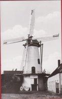 Ruiselede Knokmolen Windmolen Windmill Moulin A Vent ZELDZAAM - Ruiselede