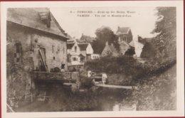 Fotokaart Temsche TEMSE Zicht Op Het Molen Water Watermolen Tamise Vue Sur Le Moulin A Eau - Temse