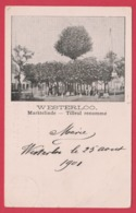 Westerlo - Marktelinde -1901 ( Verso Zien) - Westerlo