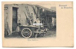 Souvenir De Bruxelles - Une Laitiere, Voiture à Chiens - Dairy, Dog Cart - Early Brussels Postcard - Old Professions