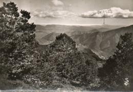 Le Pic St Loup   Et La Mediterranee Vus De L Observatoire  Edit Scheitler  No.226 - Zonder Classificatie