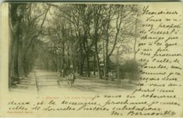 CPA - BAYONNE - LES ALLEES PAULMY - PHOTO OUVRARD - 1900s (BG4189) - Bayonne