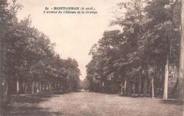 91-MONTGERON-N°T1156-B/0123 - Montgeron
