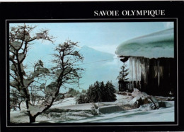 73  Savoie Olympique  Le Graphisme Des Neiges N°BN/5057 TBE - Chambery