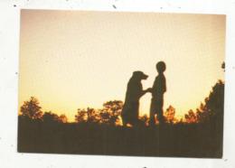 Cp , Contre La Lumière,la Solitude ça N'existe Pas !  Ours ,ourson,enfant,vierge,ed. Photo Sud Decor, Montguyon - Contre La Lumière