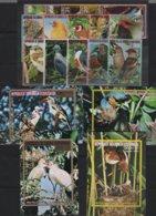 OIS 14 - GUINEE EQUATORIALE Série De 15 Val. + 4 Blocs Neufs** Oiseaux Divers - Guinée Equatoriale