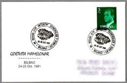 Mineral GOETHITA MAMELONAR. Bilbao, Pais Vasco, 1981 - Minerales