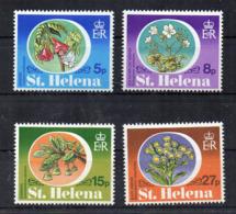 ISOLA DI ST. HELENA - 1981 - Piante Locali - 4 Valori - Nuovi - Linguellati * - (FDC17267) - Isola Di Sant'Elena