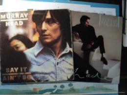 MURRAY HEAD. LOT DE DEUX 33 TOURS. 1975 / 1982. ISLAND 9101 655 / PHONOGRAM 6313 427 SAY IT AIN T SO JOE / BOY ON THE B - Vinyl-Schallplatten