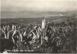 W4967 Formia E Gaeta (Latina) - Panorama Da Levante / Viaggiata 1962 - Italia