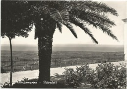 W4968 Campomarino (Campobasso) - Panorama Dal Belvedere / Viaggiata 1962 - Italie