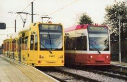 Amey Liveried Tram 2542 Passes Standard Liveried Tram 2540 At Sandilands  -  CPM - Strassenbahnen