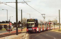 The Nescafé Tram No 2533 Crosses Kent Gateway On A Training Run From New Addington  -  CPM - Strassenbahnen