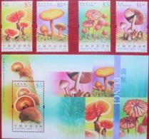 HONG KONG  2004  Mushrooms  4 V + M/s MNH - Funghi