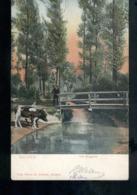 Gulpen - Het Bruggetje - 1905 - Grootrond Maastricht I 1 - 1909 - Autres