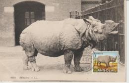 Angola Carte Maximum 1953 Rhinocéros 365 - Angola