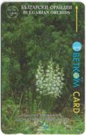 Bulgaria - Betkom - Spurred Helleborine Orchids - 40BULG - 07.1996, 30.000ex, Used - Bulgaria