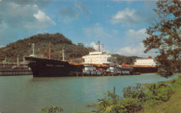 ¤¤   -  PANAMA   -   Bateau De Commere Dans Le Canal   -  Cargo       -  ¤¤ - Panama