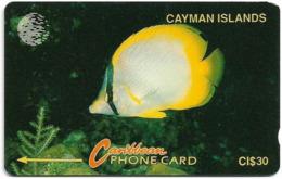 Cayman Isl. - Yellow Fish, 5CCIB, 1992, 9.905ex, Used - Kaaimaneilanden