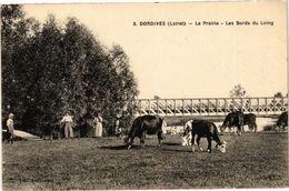 CPA DORDIVES-La Prairie-Les Bords Du LOING (264945) - Dordives
