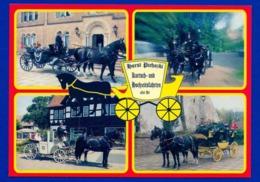 Xx01xx ★ Horst Piehozki - Kutsch- Und Hochzeitsfahrten, Pferde & Kutschen - Taxis & Droschken