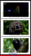 Ref. BR-V2019-22 BRAZIL 2019 ANIMALS, FAUNA, BRAZILIAN FAUNAL RICHNESS, , INSECTS, MONKEY, MANED SLOTH, MNH 3V - Brésil