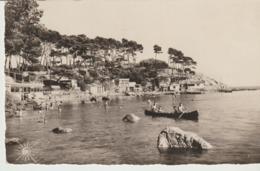 CP - PHOTO - TOULON - ET SES ENVIRONS - PORT MEJEAN - 91 - GAI SOLEIL - ANIMÉE - Toulon