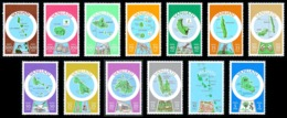 VANUATU 1980 - Yv. 583 à 595 ** TB  Cote= 40,00 EUR - Cartographie  (13 Val) POSTES  ..Réf.AFA23273 - Vanuatu (1980-...)