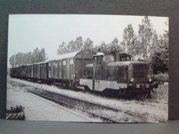 Train De Marchandise En Gare De Bouloire ?? Tracté Par Un Locotracteur CFD Le 12 Juin 1965 Photo M.Geiger - Trenes