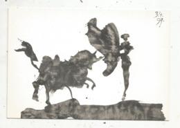 Cp, Arts , Peinture & Tabeaux , PICASSO , Corrida , Toros Y Toreros VII ,ed. Cercle D'art - Schilderijen