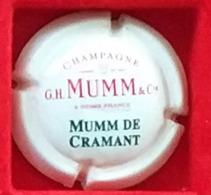 P 40 MUMM 126 - Mumm GH