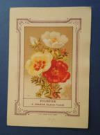 CHROMO Didactique Lithographie MINOT.  Publicité VILMORIN.  Plante. Fleur. POURPIER à GRANDE FLEUR VARIE - Vieux Papiers
