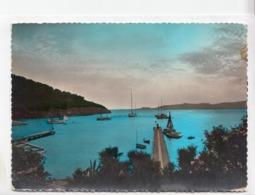 ILE DE PORT-CROS (Var), La Baie Au Crepuscule, 1960 Used Postcard [23527] - France