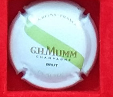 P 40 MUMM 162b - Mumm GH