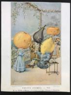 Au Bon Marché – Chromo – Fruits Animés _ VII – Imp. Goupil – GOU-2/7 - Au Bon Marché