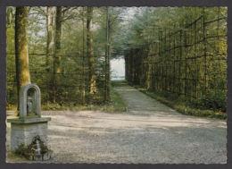 105668/ COUVIN, Bruly-de-Pesche, Entrée Du Q.G. D'Hitler - Couvin