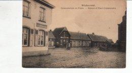 Wiekevorst  - Zicht In Het Dorp  - Place Et Maison Communale - Heist-op-den-Berg