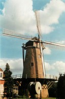 59 - Halluin - Le Moulin à Vent - Voir Scans Recto-Verso - France