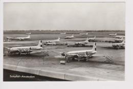 Vintage Pc KLM K.L.M Royal Dutch Airlines Fleet @ Schiphol Amsterdam Airport Version B - 1919-1938: Between Wars