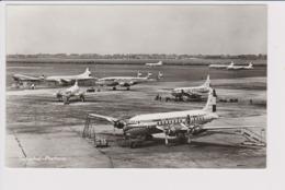 Vintage Pc KLM K.L.M Royal Dutch Airlines Fleet @ Schiphol Amsterdam Airport Version D - 1919-1938: Between Wars