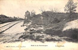 Kalmthout Calmpthout - Zicht In De Boterbergen (F. Hoelen Phot.....vlekken) - Kalmthout