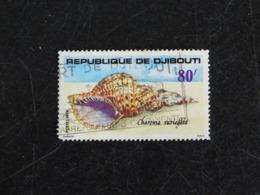 DJIBOUTI YT 487 OBLITERE - COQUILLAGE CHARONIA - Dschibuti (1977-...)