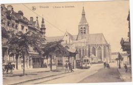 41689 -    Vilvoorde L'avenue De Schaerbeek - Tram - Vilvoorde