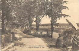 Boitsfort NA25: Panorama Vers La Citadelle Vu De La Montagne Du Chat - Watermael-Boitsfort - Watermaal-Bosvoorde