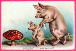 Cp Gaufrée - Anthropomorphisme - Pig - Truie Apprenant à Marcher à Son Porcelet - Cochon Et Champignon - 1907 - Cochons
